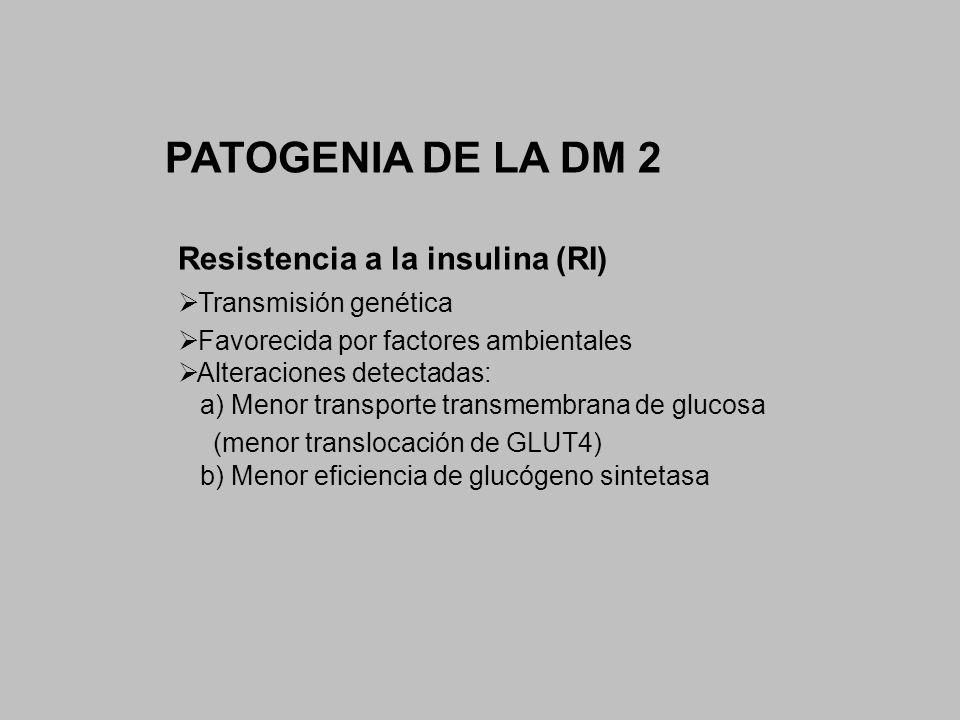 PATOGENIA DE LA DM 2 Resistencia a la insulina (RI)