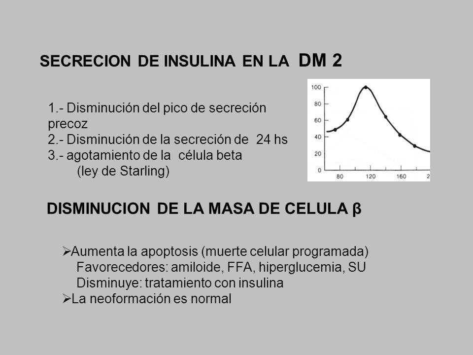SECRECION DE INSULINA EN LA DM 2