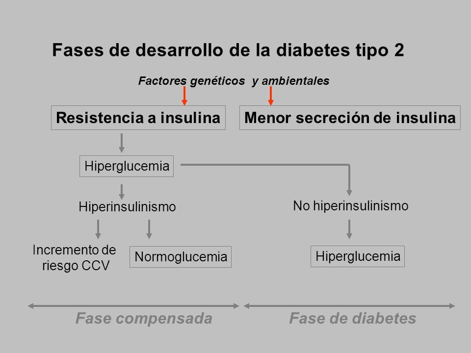 Fases de desarrollo de la diabetes tipo 2