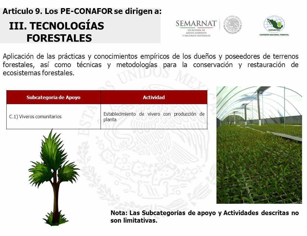 proyectos especiales de conservaci n y restauraci n On establecimiento de viveros forestales
