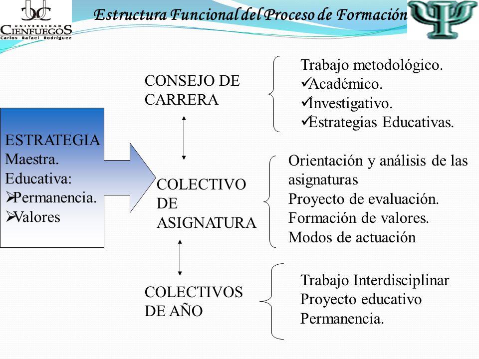 Estructura Funcional del Proceso de Formación