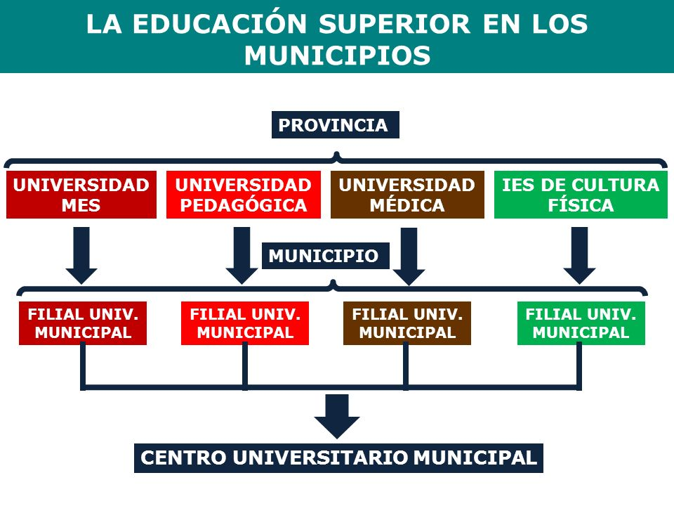 LA EDUCACIÓN SUPERIOR EN LOS MUNICIPIOS