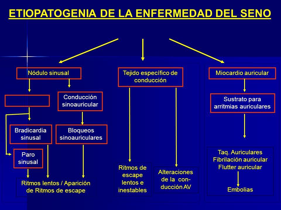 ETIOPATOGENIA DE LA ENFERMEDAD DEL SENO