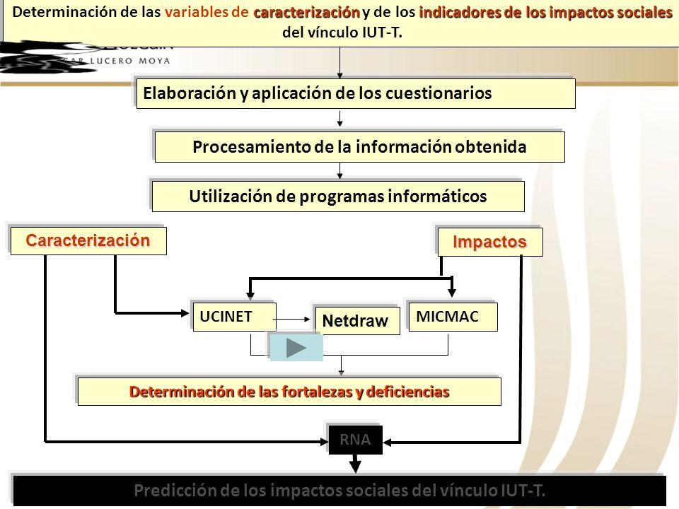 Elaboración y aplicación de los cuestionarios