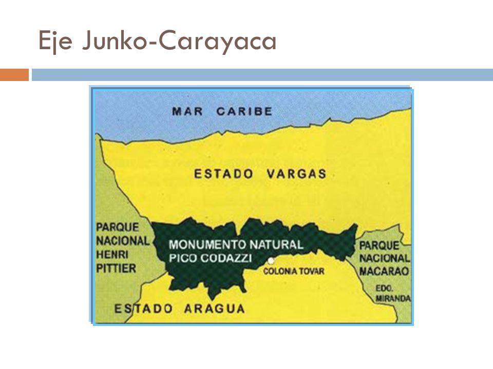 Eje Junko-Carayaca