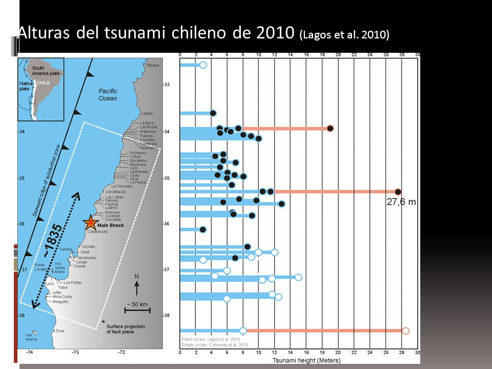 Alturas del tsunami chileno de 2010 (Lagos et al. 2010)