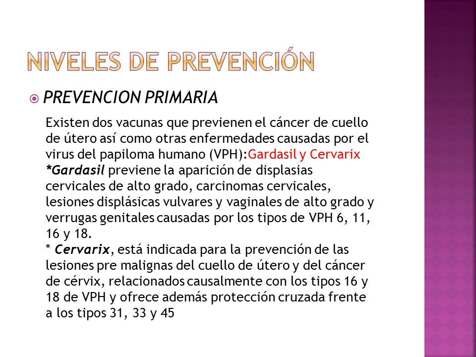 Niveles de prevención PREVENCION PRIMARIA