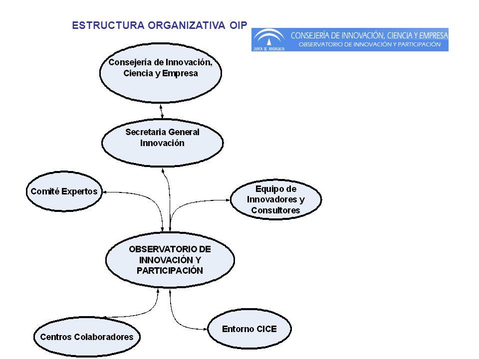ESTRUCTURA ORGANIZATIVA OIP
