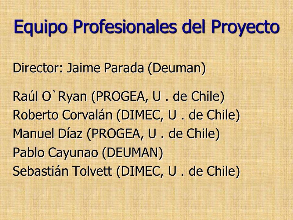 Equipo Profesionales del Proyecto