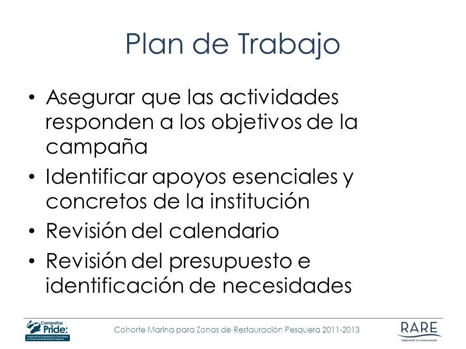Plan de Trabajo Asegurar que las actividades responden a los objetivos de la campaña. Identificar apoyos esenciales y concretos de la institución.