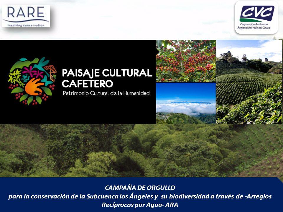 CAMPAÑA DE ORGULLO para la conservación de la Subcuenca los Ángeles y su biodiversidad a través de -Arreglos Recíprocos por Agua- ARA.