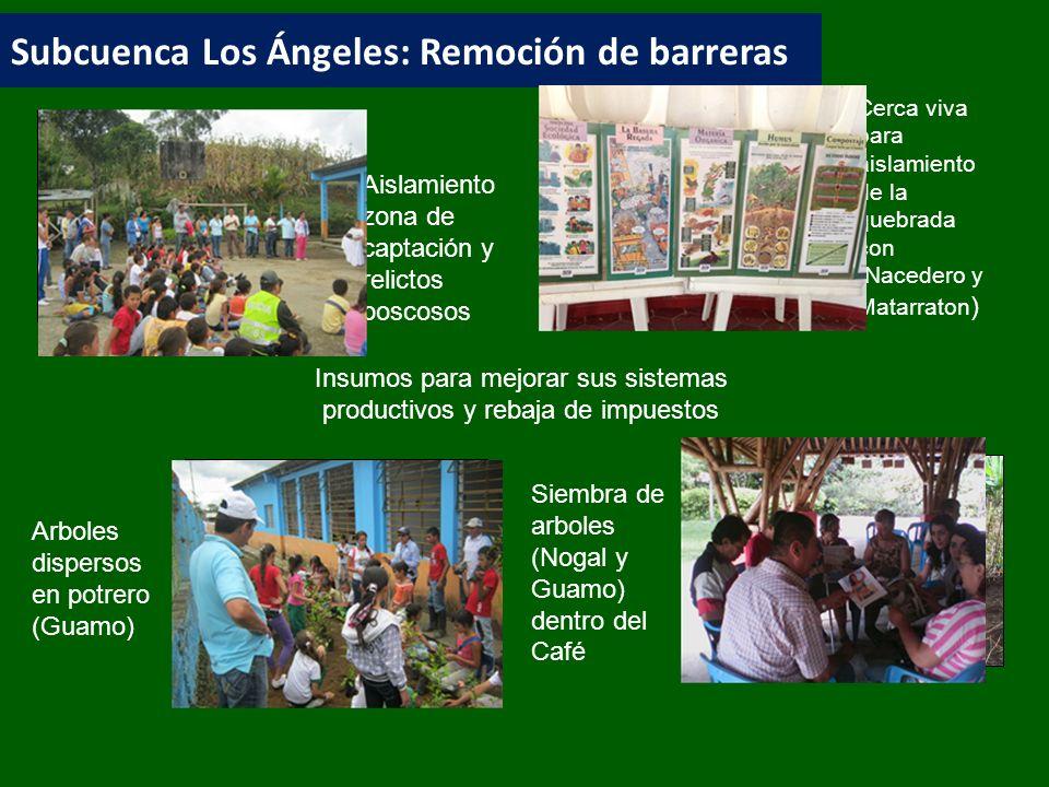 Subcuenca Los Ángeles: Remoción de barreras