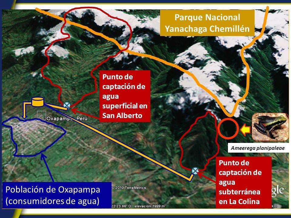 Parque Nacional Yanachaga Chemillén