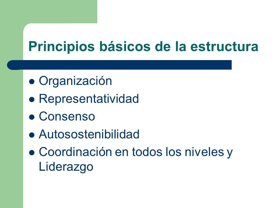 Principios básicos de la estructura
