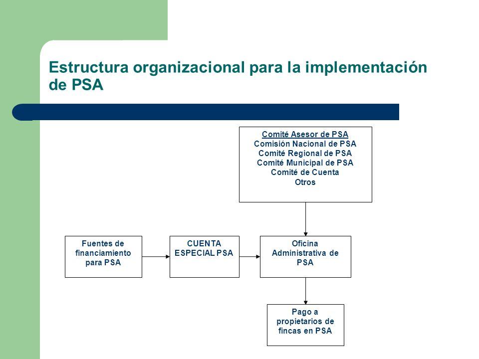 Estructura organizacional para la implementación de PSA