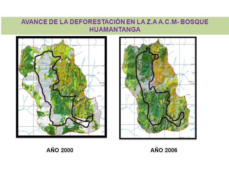 AVANCE DE LA DEFORESTACIÓN EN LA Z.A A.C.M- BOSQUE HUAMANTANGA