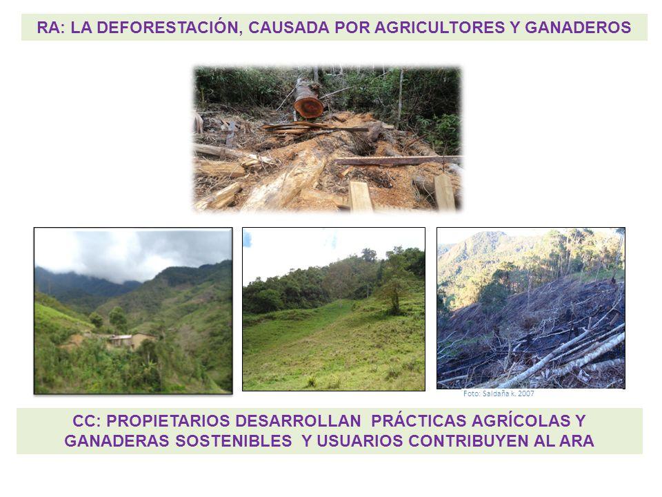 RA: LA DEFORESTACIÓN, CAUSADA POR AGRICULTORES Y GANADEROS