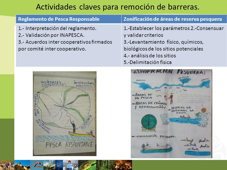 Actividades claves para remoción de barreras.