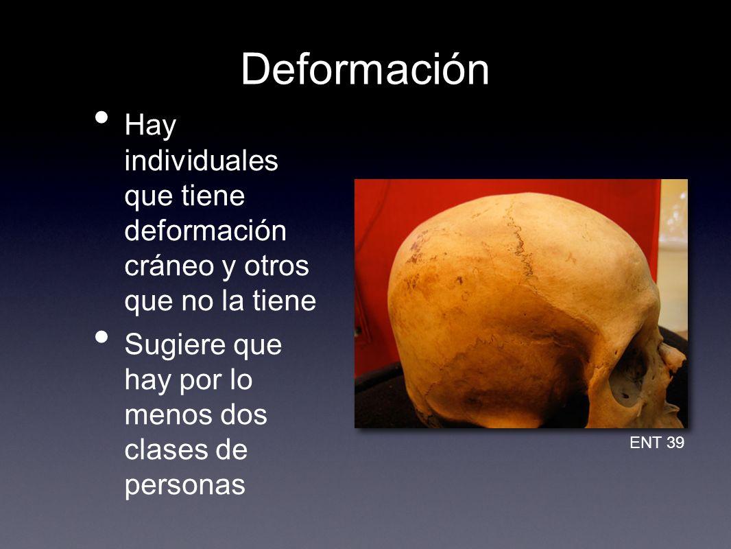 Deformación Hay individuales que tiene deformación cráneo y otros que no la tiene. Sugiere que hay por lo menos dos clases de personas.