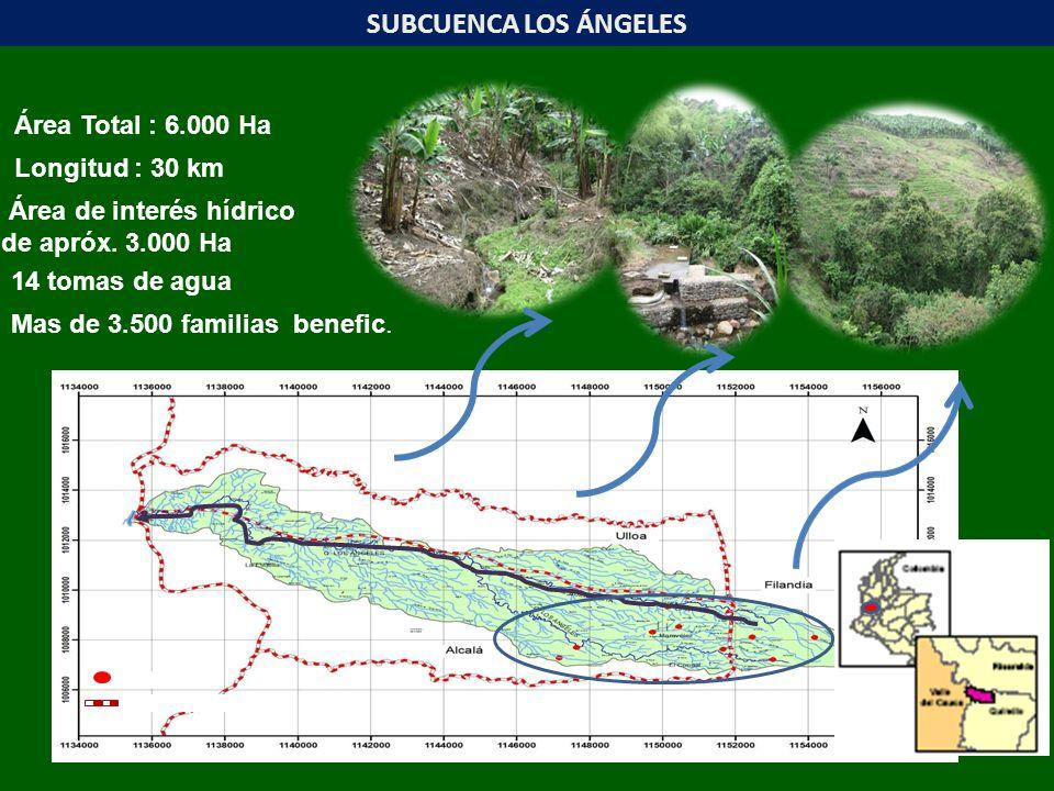 SUBCUENCA LOS ÁNGELES Área Total : 6.000 Ha Longitud : 30 km