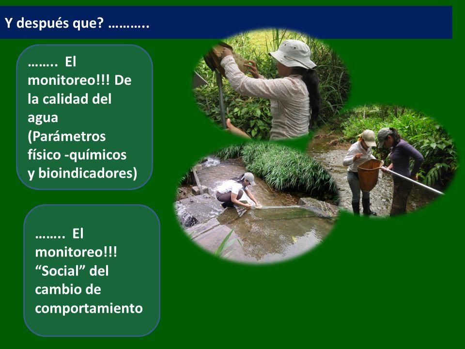 Y después que ……….. …….. El monitoreo!!! De la calidad del agua (Parámetros físico -químicos y bioindicadores)
