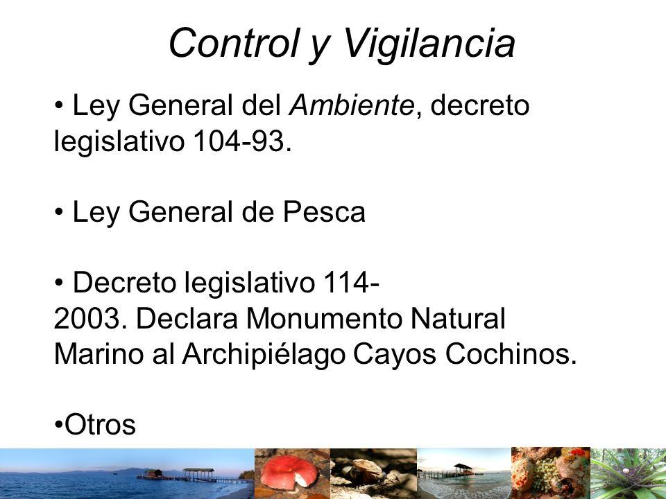 Control y Vigilancia Ley General del Ambiente, decreto