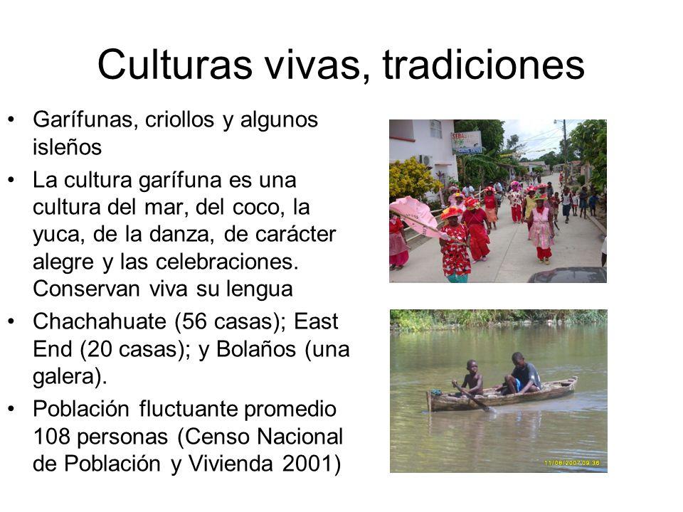 Culturas vivas, tradiciones