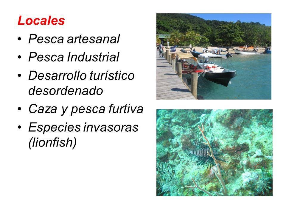 Locales Pesca artesanal. Pesca Industrial. Desarrollo turístico desordenado. Caza y pesca furtiva.