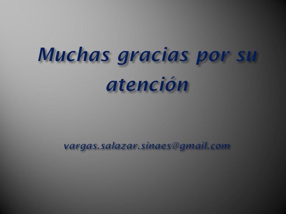 Muchas gracias por su atención vargas.salazar.sinaes@gmail.com