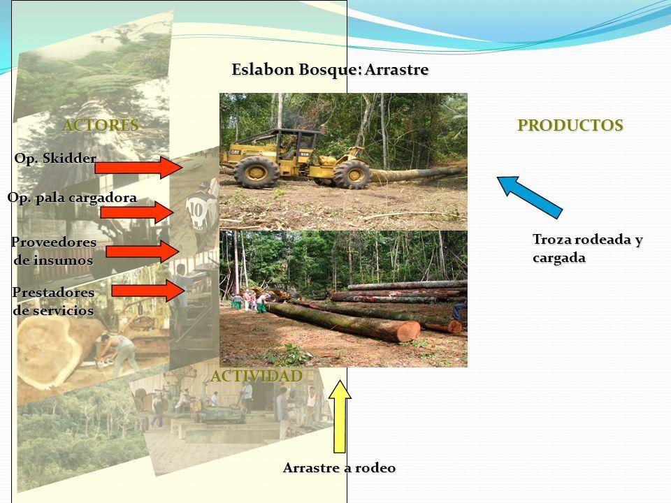 Eslabon Bosque: Arrastre ACTORES PRODUCTOS ACTIVIDAD