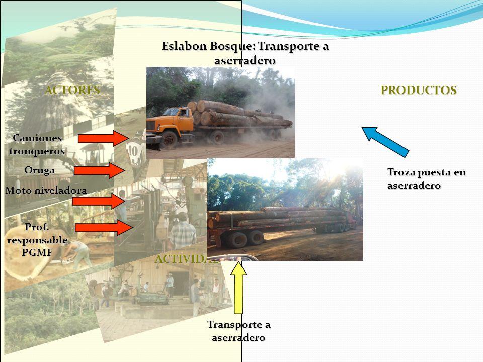 Eslabon Bosque: Transporte a aserradero