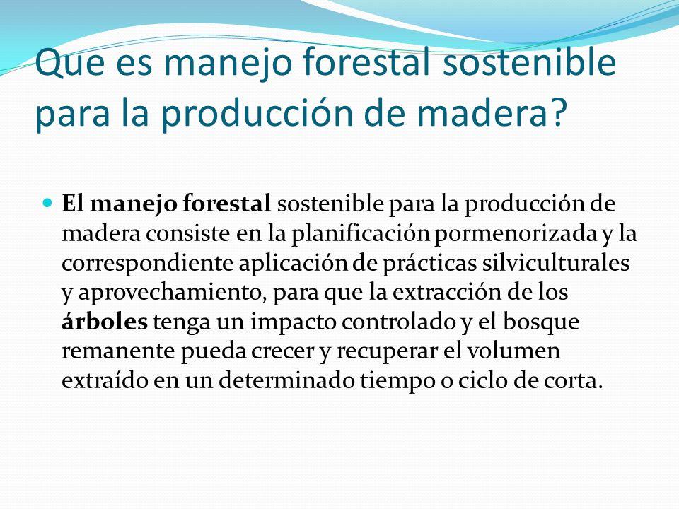 Que es manejo forestal sostenible para la producción de madera