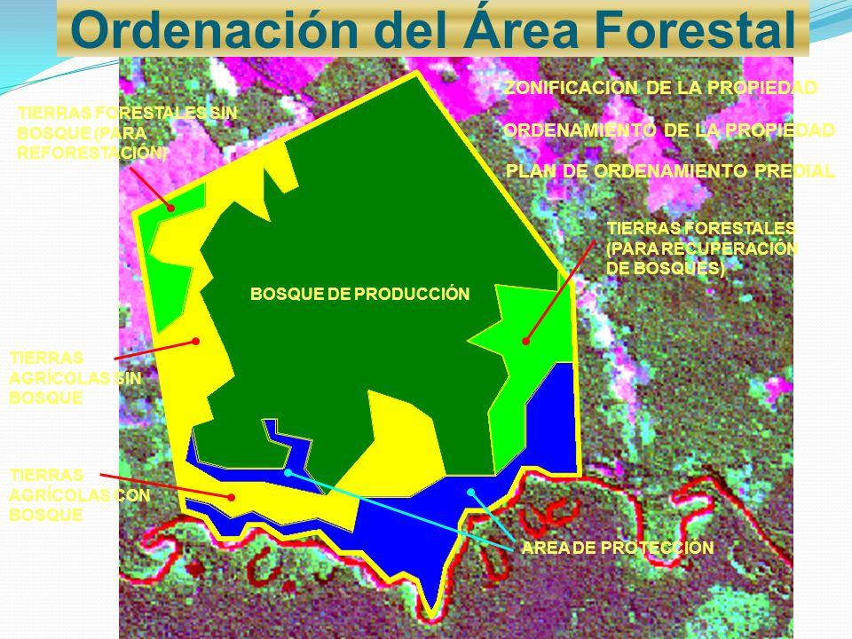 Ordenación del Área Forestal