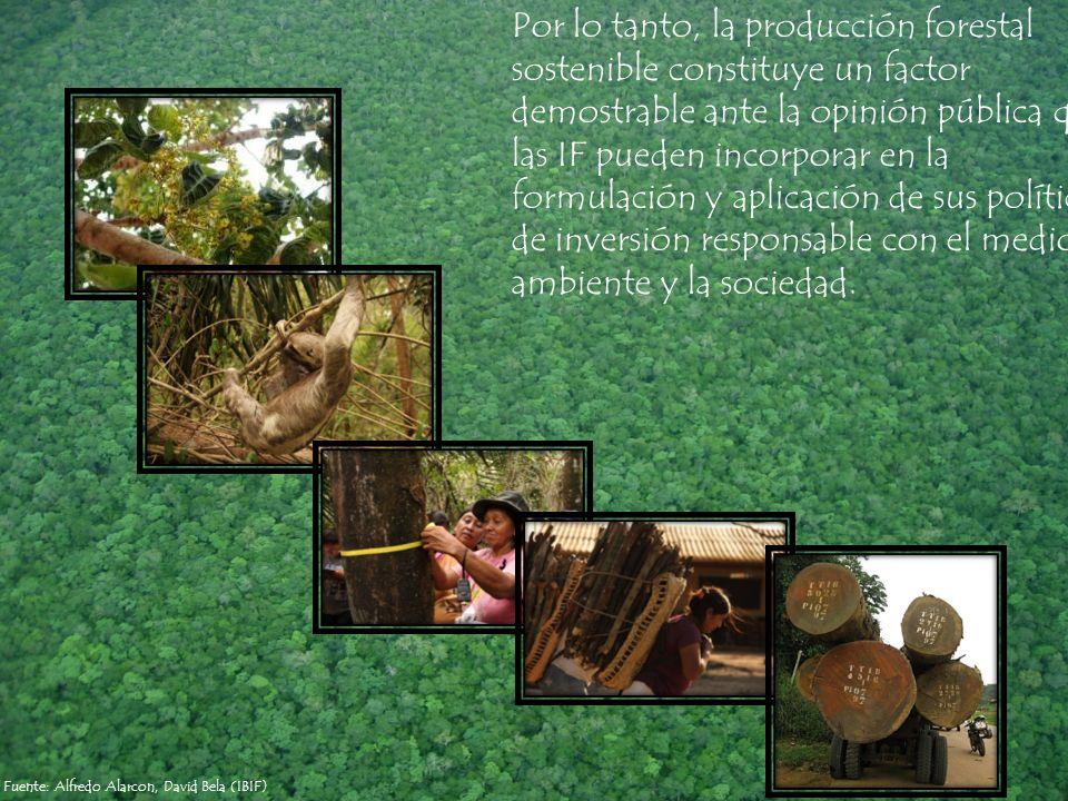 Por lo tanto, la producción forestal sostenible constituye un factor demostrable ante la opinión pública que las IF pueden incorporar en la formulación y aplicación de sus políticas de inversión responsable con el medio ambiente y la sociedad.