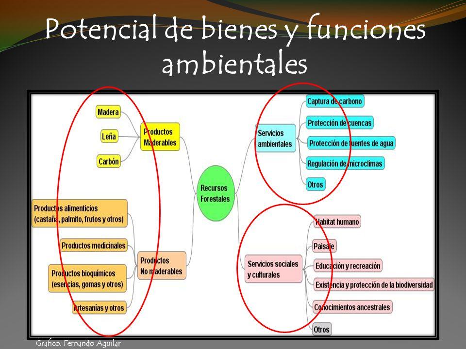 Potencial de bienes y funciones ambientales