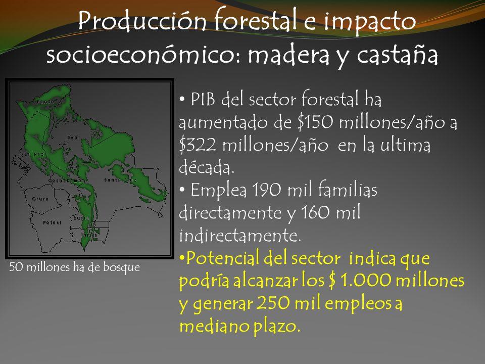Producción forestal e impacto socioeconómico: madera y castaña