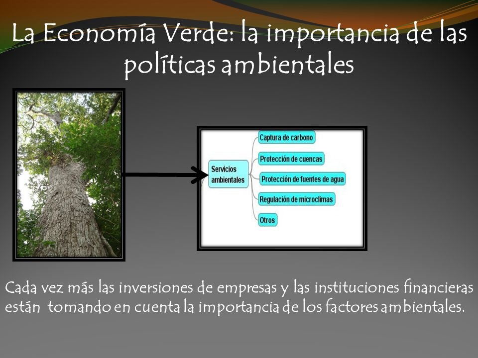 La Economía Verde: la importancia de las políticas ambientales