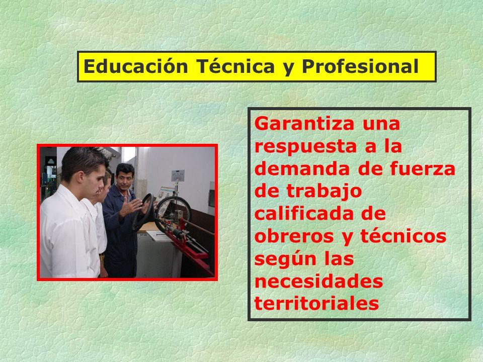 Educación Técnica y Profesional