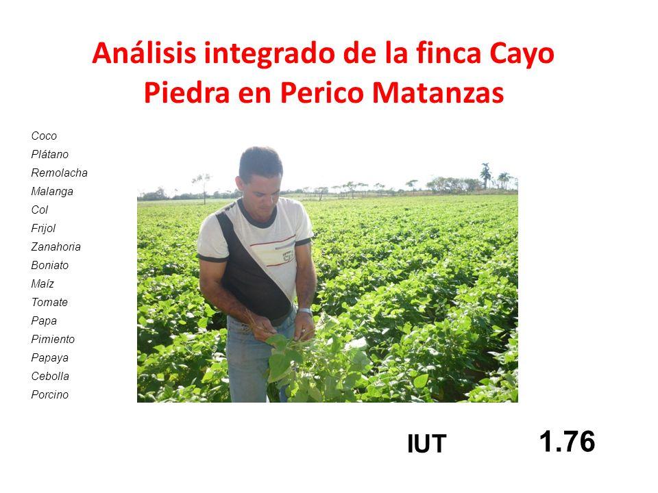 Análisis integrado de la finca Cayo Piedra en Perico Matanzas