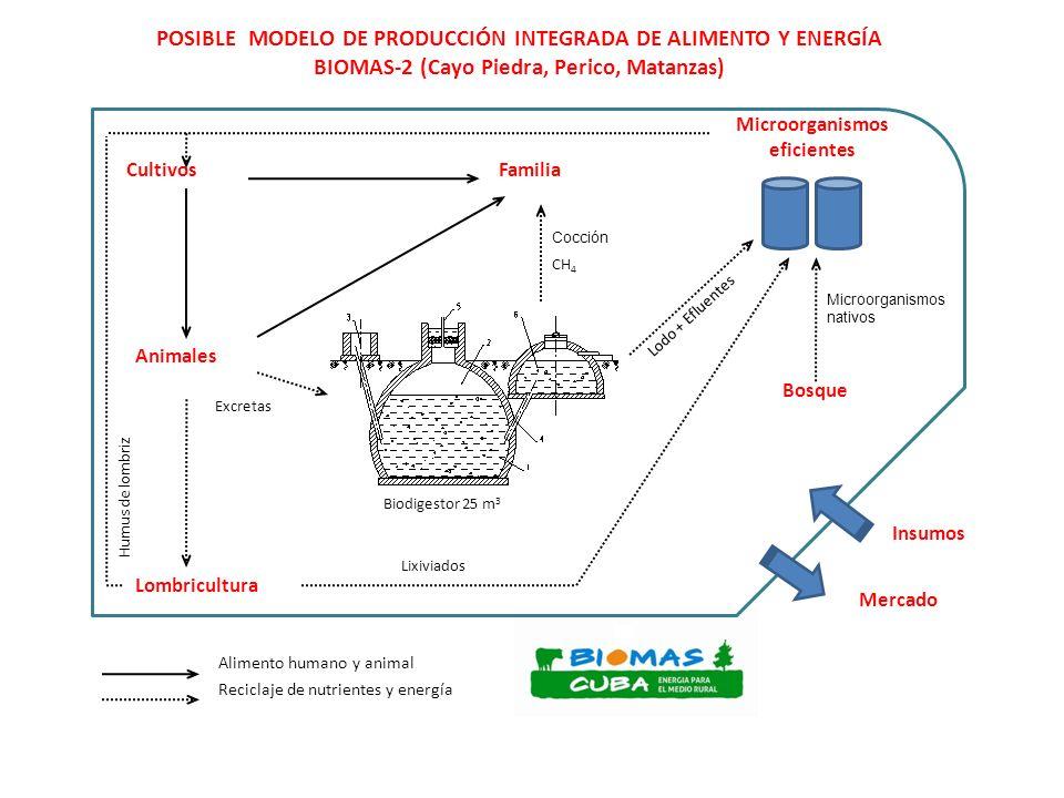 POSIBLE MODELO DE PRODUCCIÓN INTEGRADA DE ALIMENTO Y ENERGÍA