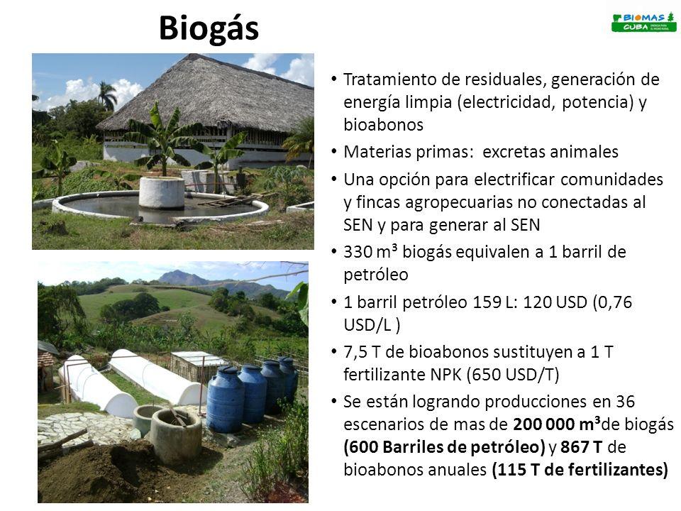 Biogás Tratamiento de residuales, generación de energía limpia (electricidad, potencia) y bioabonos.