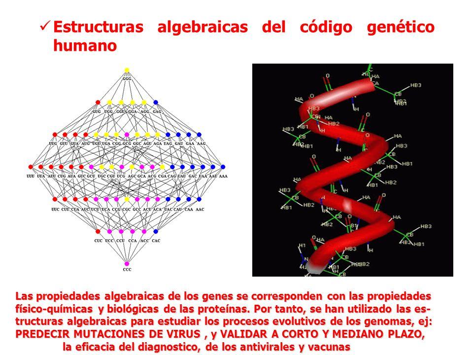 Estructuras algebraicas del código genético humano