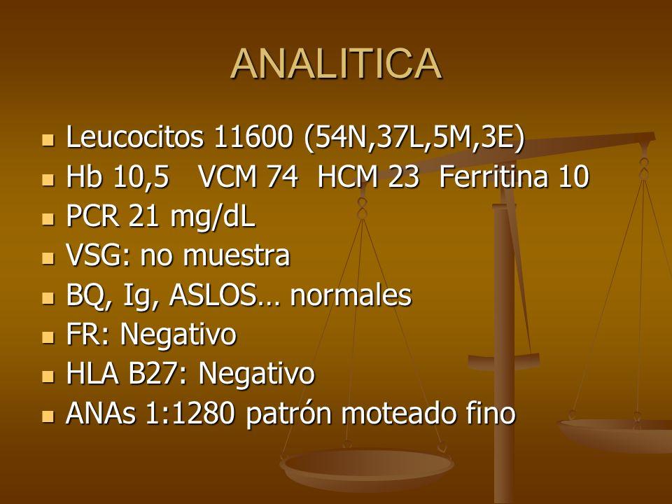 ANALITICA Leucocitos 11600 (54N,37L,5M,3E)