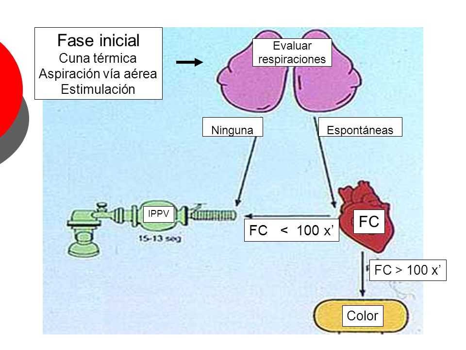 Fase inicial FC FC < 100 x' Cuna térmica Aspiración vía aérea