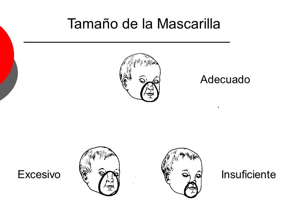 Tamaño de la Mascarilla