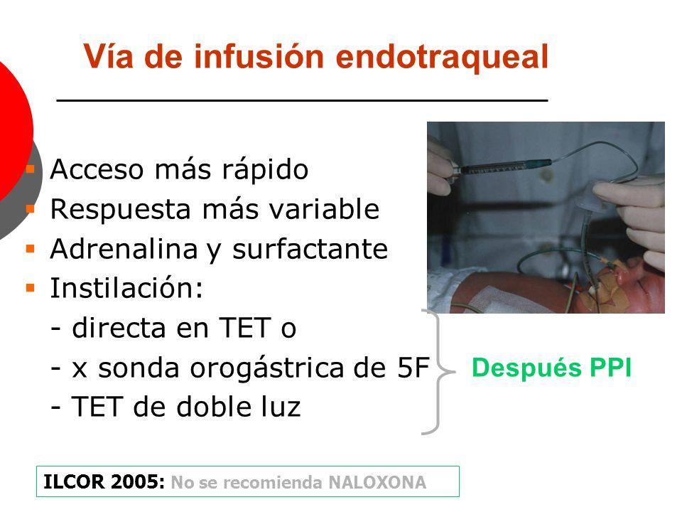 Vía de infusión endotraqueal