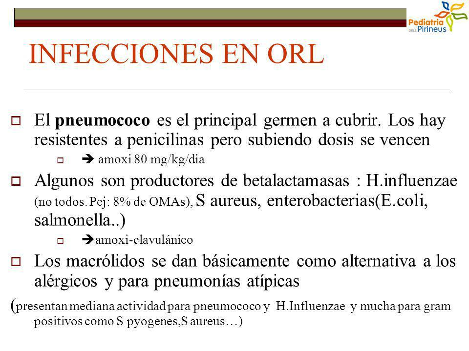 INFECCIONES EN ORL El pneumococo es el principal germen a cubrir. Los hay resistentes a penicilinas pero subiendo dosis se vencen.