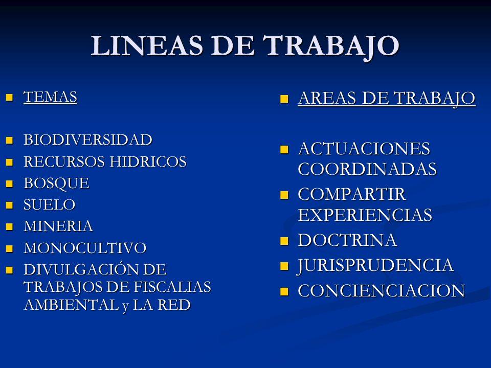 LINEAS DE TRABAJO AREAS DE TRABAJO ACTUACIONES COORDINADAS