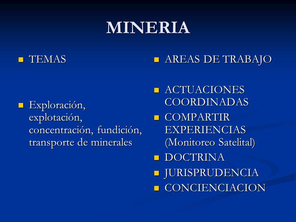 MINERIA TEMAS. Exploración, explotación, concentración, fundición, transporte de minerales. AREAS DE TRABAJO.