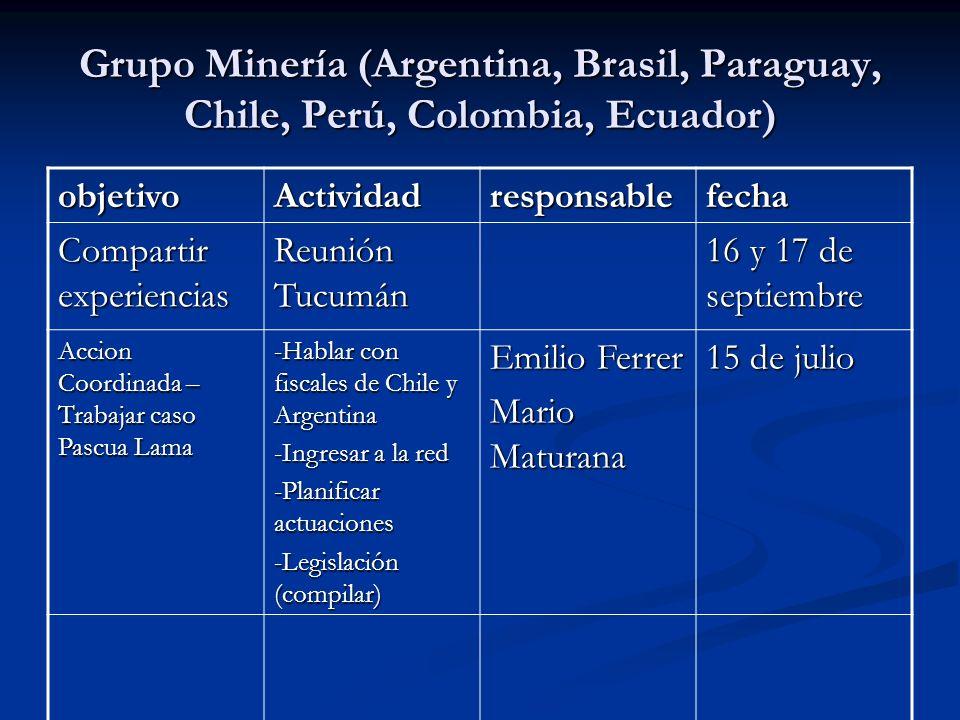 Grupo Minería (Argentina, Brasil, Paraguay, Chile, Perú, Colombia, Ecuador)